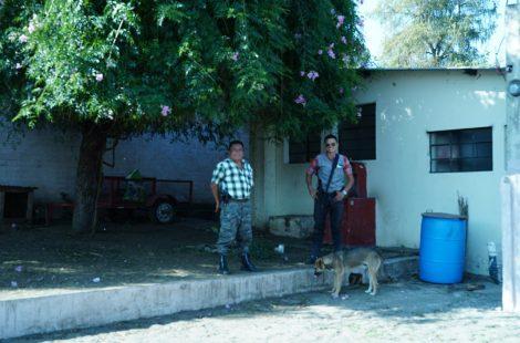 ベラビスタ農園 警備