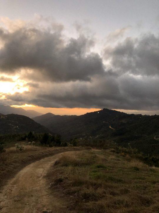 サンマルティン農園からの帰り道
