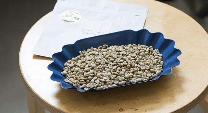 エルセロ農園 イエローカツーラ コーヒー生豆