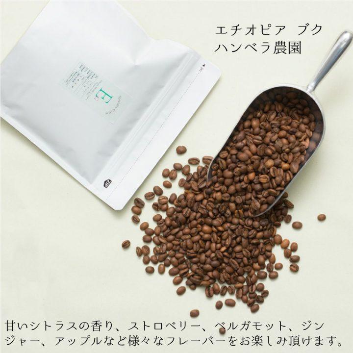 エチオピア スペシャルティコーヒー