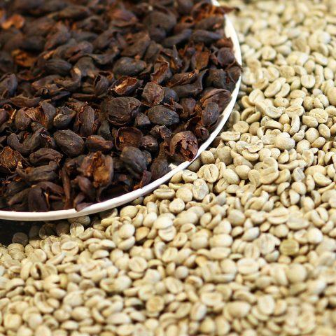 コーヒー生豆とカスカラ